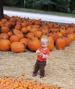 Thomas_17months_pumpkinpatch2013